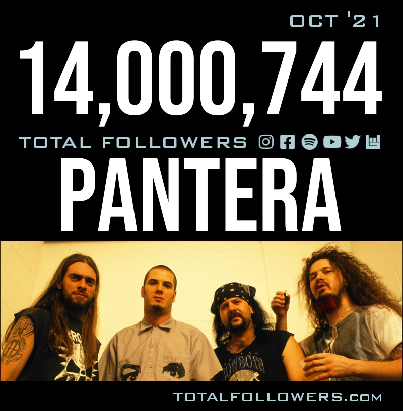 Total Followers Graphic